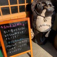 『狸の腹鼓』